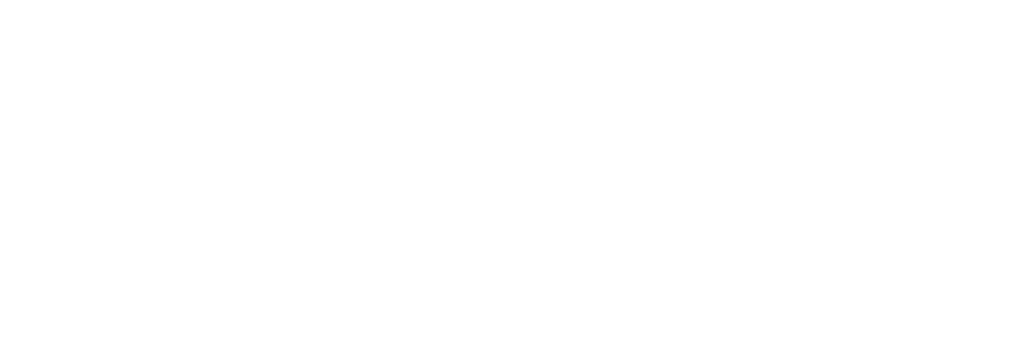 Projectum is a Gold & Silver Microsoft Partner