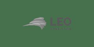 LEO consulting logo |Projectum Partner